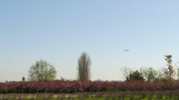 Tryskové letadlo Boeing 737 blíží přistání