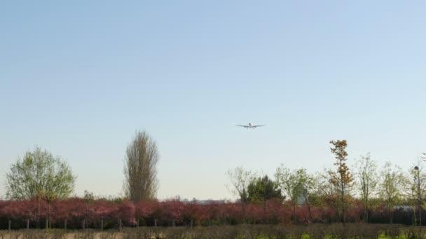 Přistání komerční dopravní letadlo