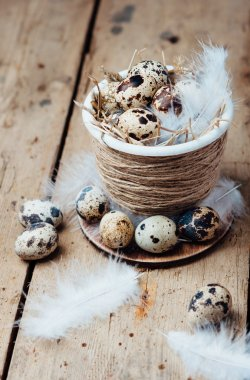 Quail eggs in Easter pot and white feathers on a rough wooden table.