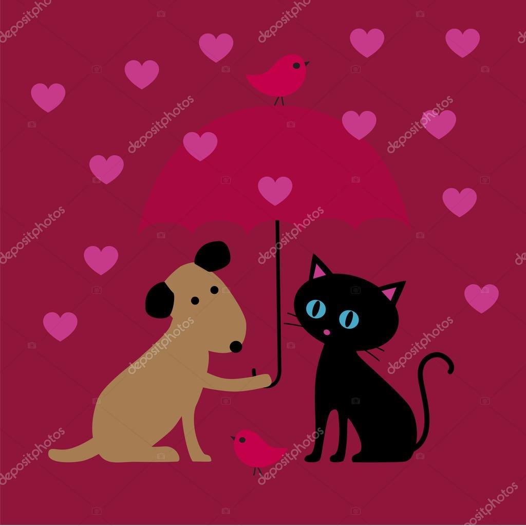 valentine cat and dog