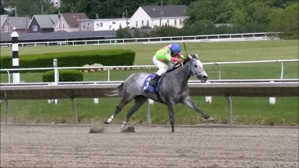 Lassú mozgás verseny ló