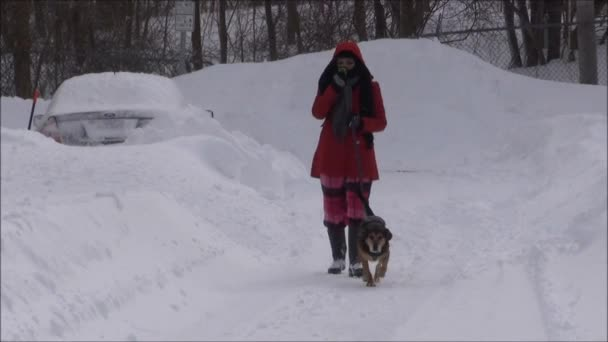 Walking Dog After Winter Snowstorm