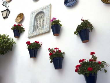 Mijas one of the most beautiful 'white' villages of Andalucia. It is in the Alpujarra mountains above the coast