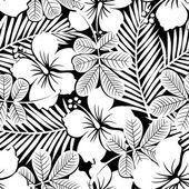Černá a bílá tropické ibišky květiny a rostliny bezproblémové pa