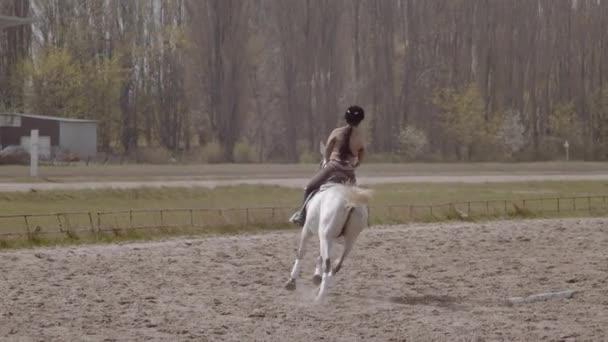 Pomalý pohyb. Mladá jezdkyně kráčí s koněm ve venkovním písečném parku na koni aréně. Výcvik koní ve venkovním prostředí, jezdecký sport.