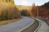 Strada tortuosa attraverso una foresta