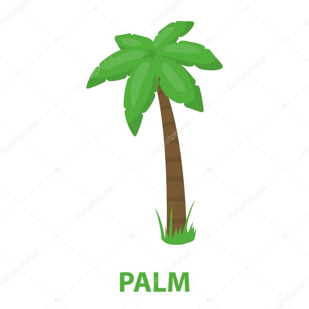 Icono de vector de Palma en estilo de dibujos animados para web — Vector de  stock 668df6a9165