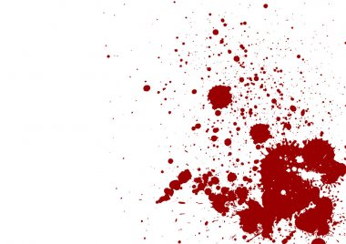 dark red splash on white background. Vector illustration. Grunge