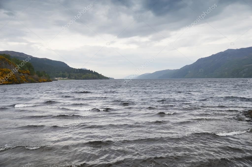 """loch ness chat Startled jolene lin captured this photo of a """"snake-like head"""" poking out of loch  ness during a pleasure cruise last week prior to the sighting,."""