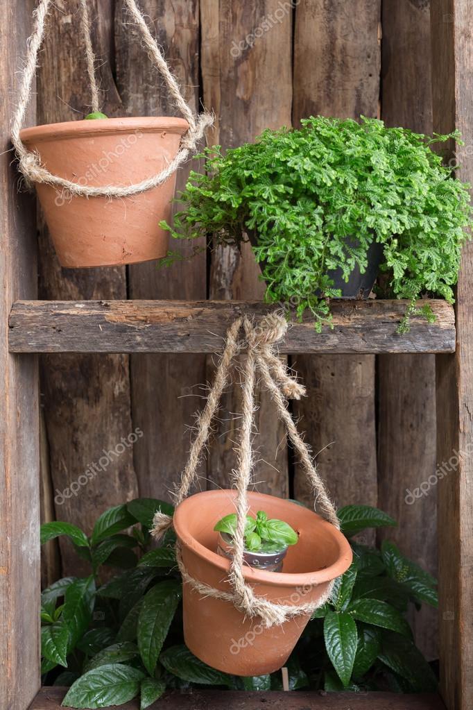 decoración de jardín pequeño — Fotos de Stock © Sutichak #122066738