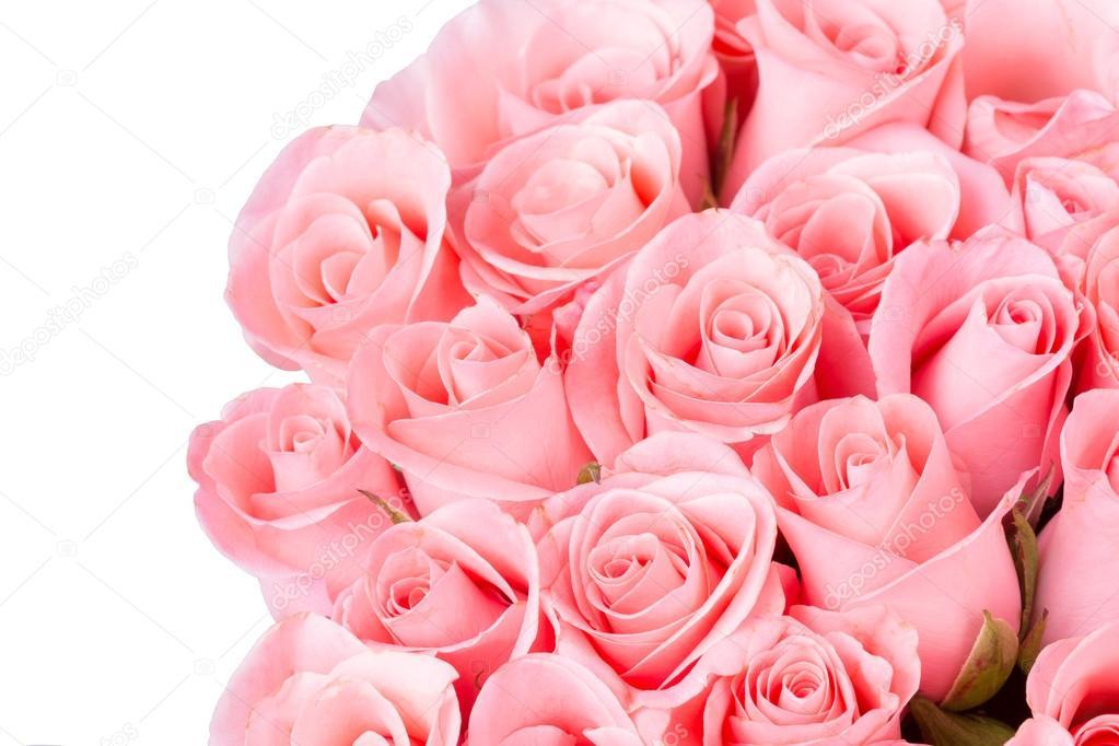 Bouquet De Fleur Rose Rose Sur Fond Blanc Photographie Sutichak