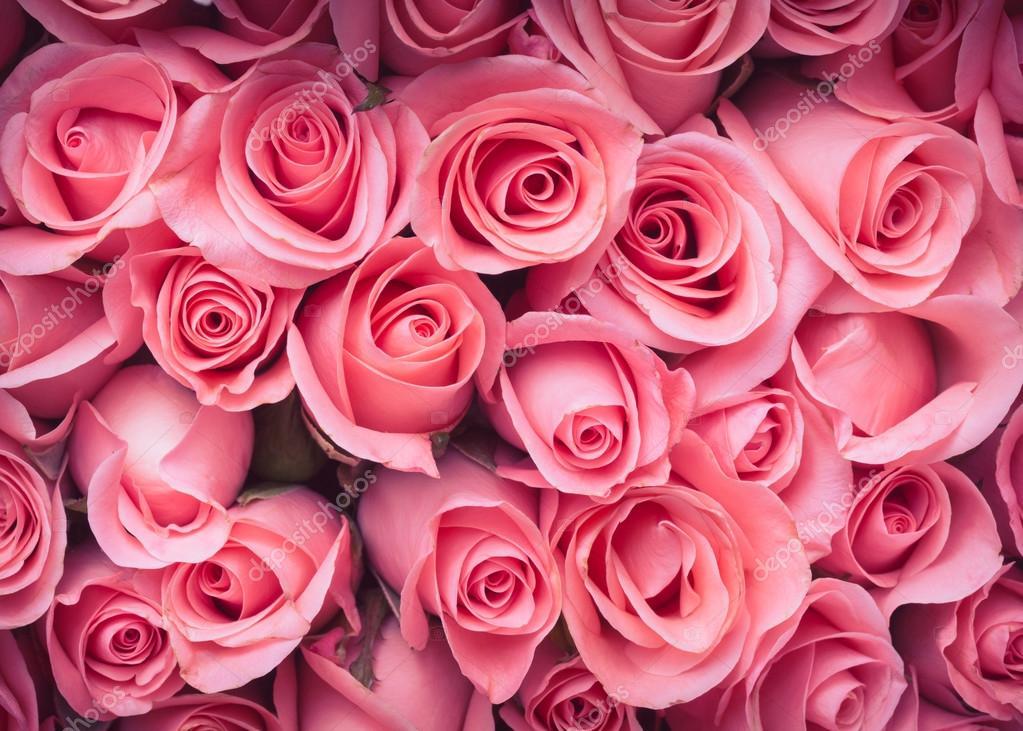 Pink Rose Flower Bouquet Vintage Background Stock Photo Sutichak