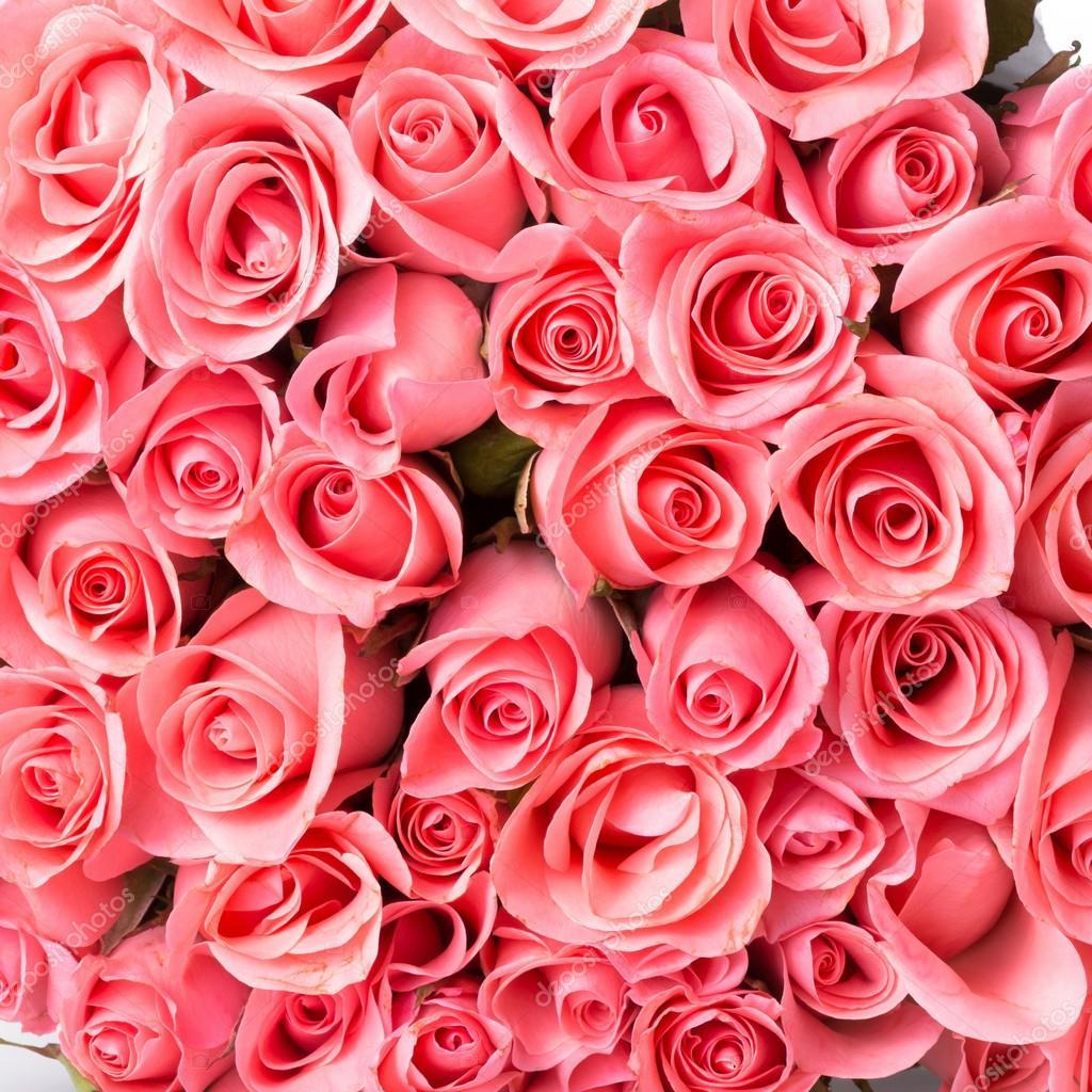 Fond De Bouquet De Fleur Rose Rose Photographie Sutichak C 73727623