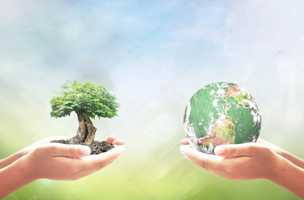 World soil day concept