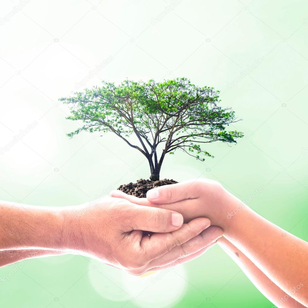 how to help the environment