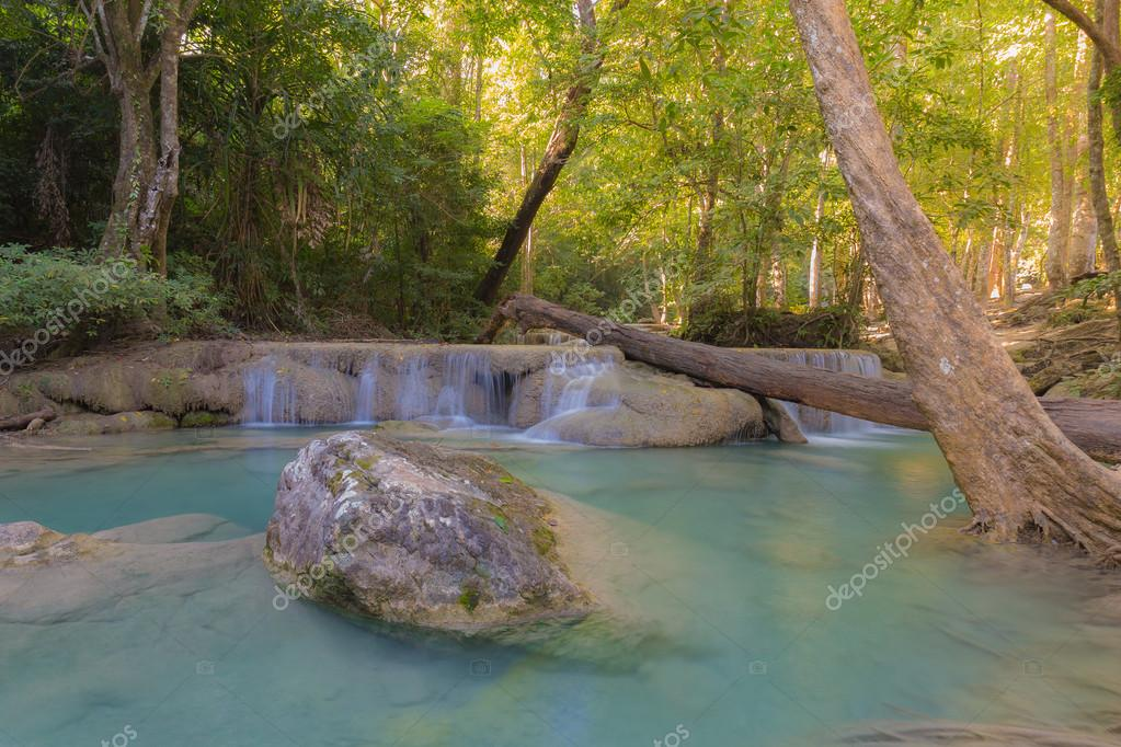 Фотообои Deep forest jungle, water fall in spring season