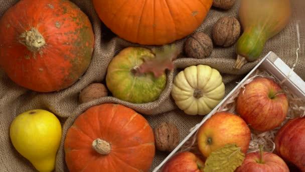 Složení dýně, jablek, vlašských ořechů a podzimních listů. Padající podzimní listí zpomaleně. Pohled na podzim zátiší. Halloween holiday.
