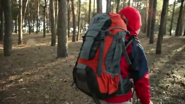 Dítě chůze v dobrodružství na horských stezek, cest, turistika s batohem, pěší turistika v lese, užívat přírody na Camping