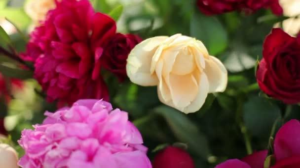 Krásné světlé květy v kytici pivoňky, růže. Slavnostní kytice čerstvých květin. Svatební floristika. Zblízka