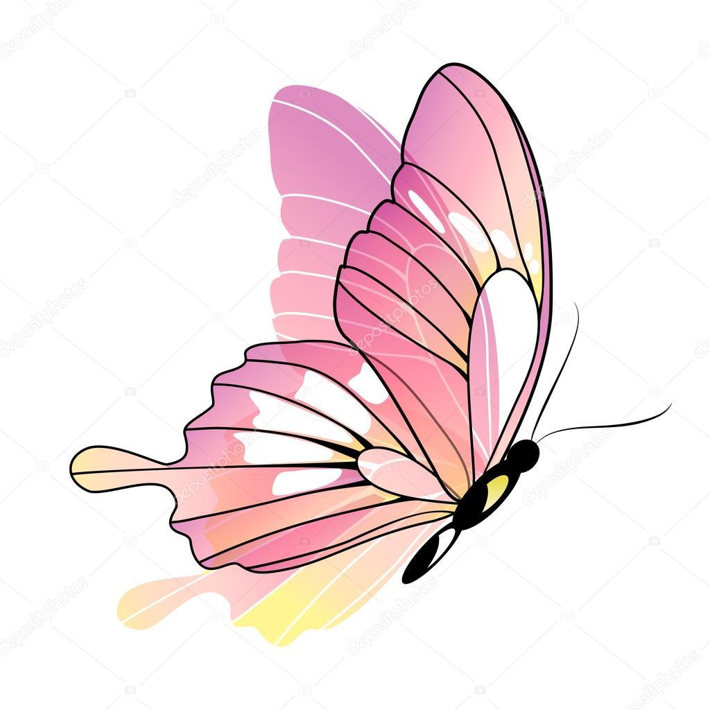 Disegno Farfalle Vettoriali Stock Aboard 53418739