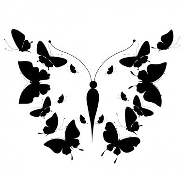 Silhouette of a butterfly on a white background