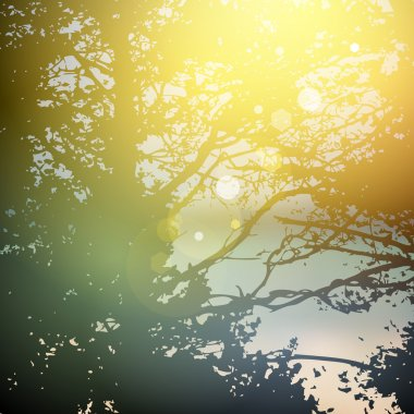 summer design, forest trees, nature green wood sunlight natural green background. Vector