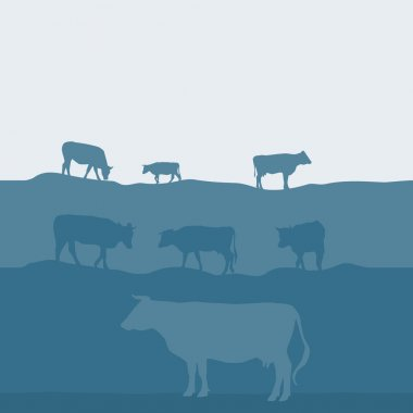 Cows silhouette graze in the field, landscape sky grass pasture. Blue, gray background. Vector illustration stock vector