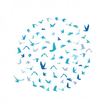 Doves and pigeons set in a circle for peace concept and wedding design. Flying blue birds sketch set. Vector