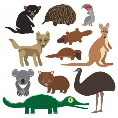 Animals Australia: Echidna Platypus ostrich Emu Tasmanian devil Cockatoo parrot Wombat crocodile kangaroo dingo. Vector