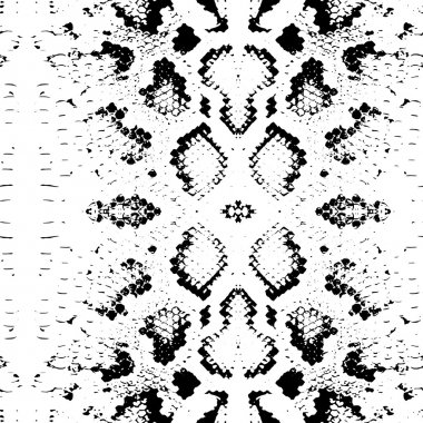 Seamless pattern Snake skin texture. black on white background. Vector