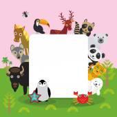 Fotografie Niedliche Cartoon-Tiere Tukan Hirsch Waschbär Pferd Wolf Bison Penguin Seestern Krabbe Siegel Leopard Panda Eisbär, Rahmen, Design-Karte, Banner für Text gesetzt. Vektor