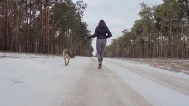 Cute young woman in warm clothes walking with her shepherd dog in winter forest with snow