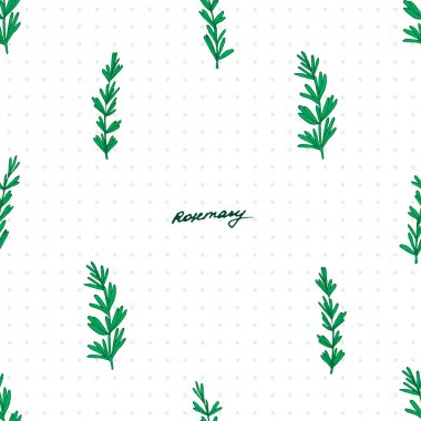 Elegant hand drawn rosemary herb seamless pattern