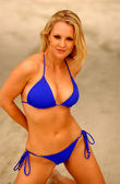 Photo Playboy Model Rebecca Newell - Blue Bikini