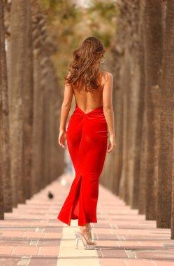 Red Dinner Dress - Palm Tree Walkway -  Playboy Model Miss St. Augustine