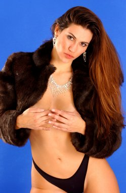 Brown Mink Stole - Silver Jewelry