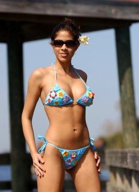 Curvy Brazilian Brunette - Flower Blue Skimpy Bikini - Blue Sky Background