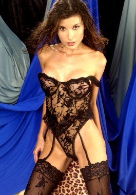 Sheer Lace Corset - Sheer Lace Panties - Sheer Lace Stockings