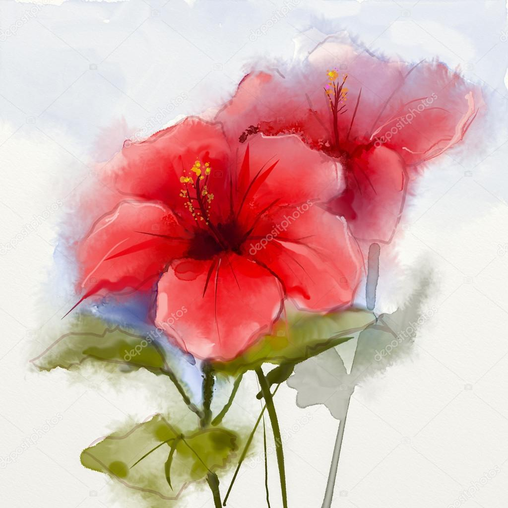 Watercolor Painting Red Hibiscus Flower Stock Photo Nongkranch
