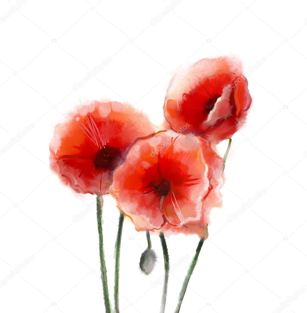 Red Poppy Flowers Watercolor Painting Stock Photo Nongkranch