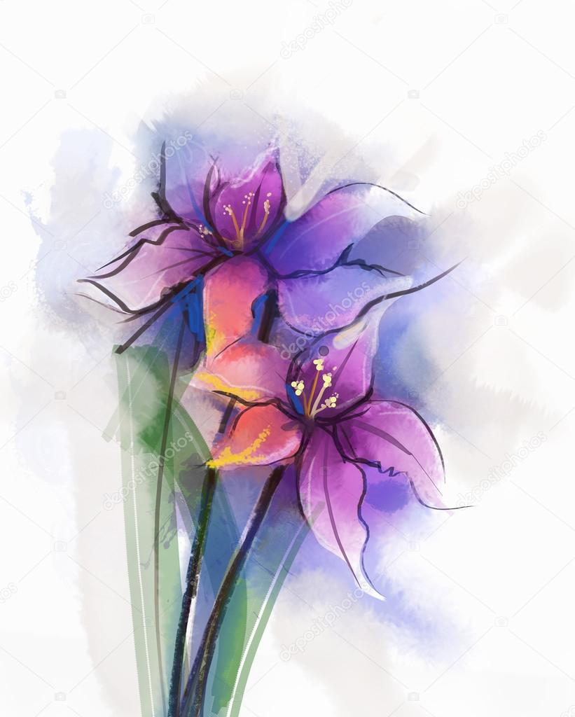 Watercolor painting violet lily flowers blossom. Hand Painted Close up of lilies floral petals in soft color
