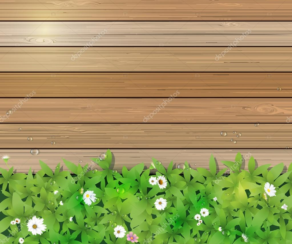 Vector illustration Spring nature background. Green grass and leaf plant, White Gerbera, Daisy flowers and sunlight over wood fence with water dew drops