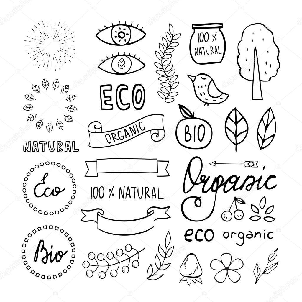 Modern hand drawn elements design organic
