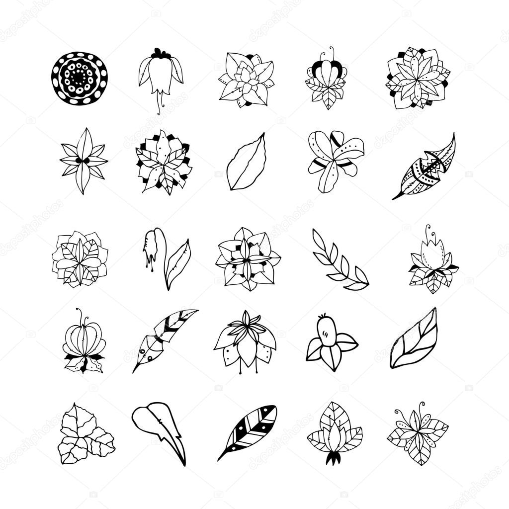 Set of hand drawn mystical plants