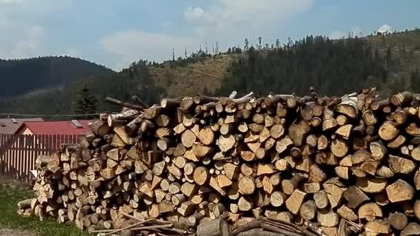 Dřevo v harmonii obzor hor.