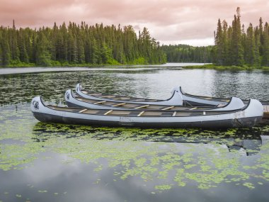 Canoes floating on a peaceful lake, Quebec, Canada