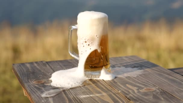 foam in a glass of beer on the background of a wheat field