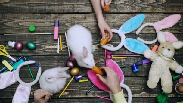 Family hands painting Easter eggs. Happy easter family prepare to holiday. Pet bunny rabbit.
