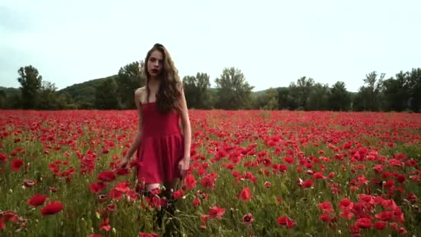 Sensual girl on poppy flowers field. Outdoor portrait of a beautiful young woman.