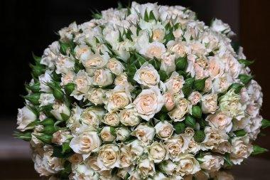 Beautiful flowers closeup